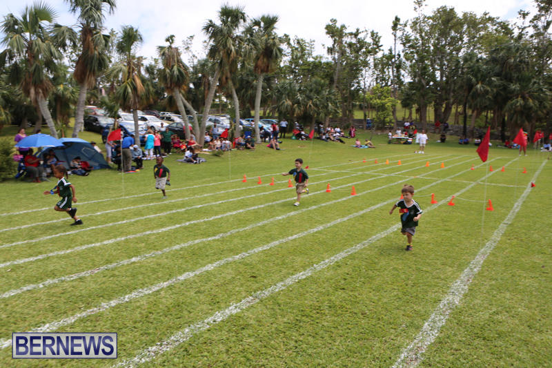 Devonshire-Preschool-Sports-Bermuda-May-22-2015-247