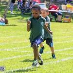 Devonshire Preschool Sports Bermuda, May 22 2015-28