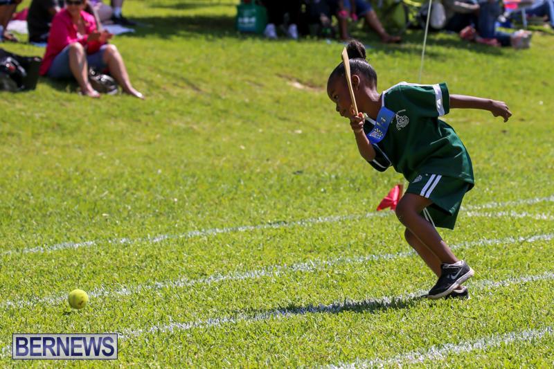 Devonshire-Preschool-Sports-Bermuda-May-22-2015-39