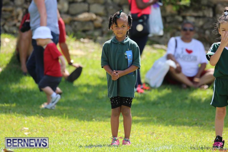 Devonshire-Preschool-Sports-Bermuda-May-22-2015-42