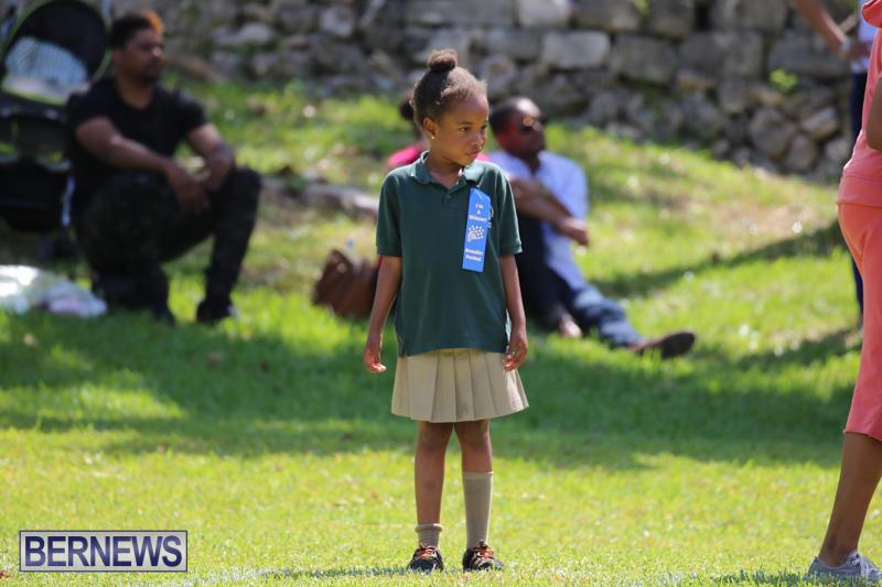 Devonshire-Preschool-Sports-Bermuda-May-22-2015-43