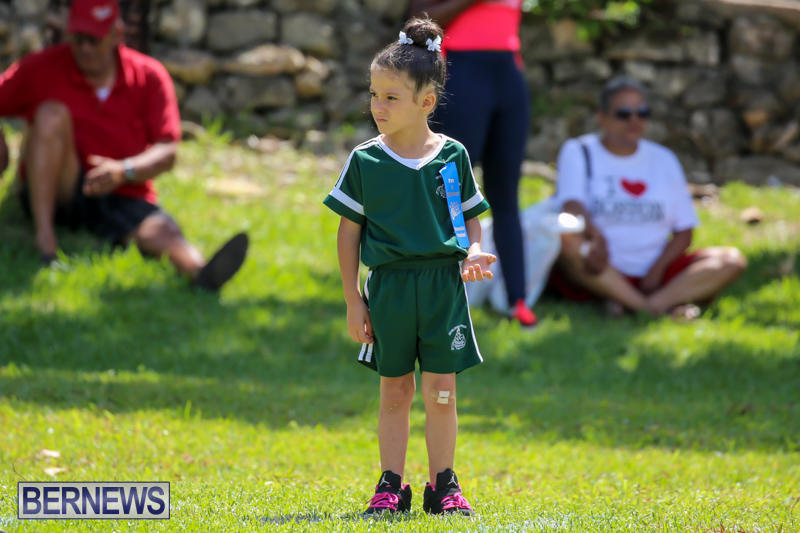 Devonshire-Preschool-Sports-Bermuda-May-22-2015-45