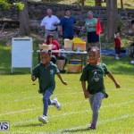 Devonshire Preschool Sports Bermuda, May 22 2015-5