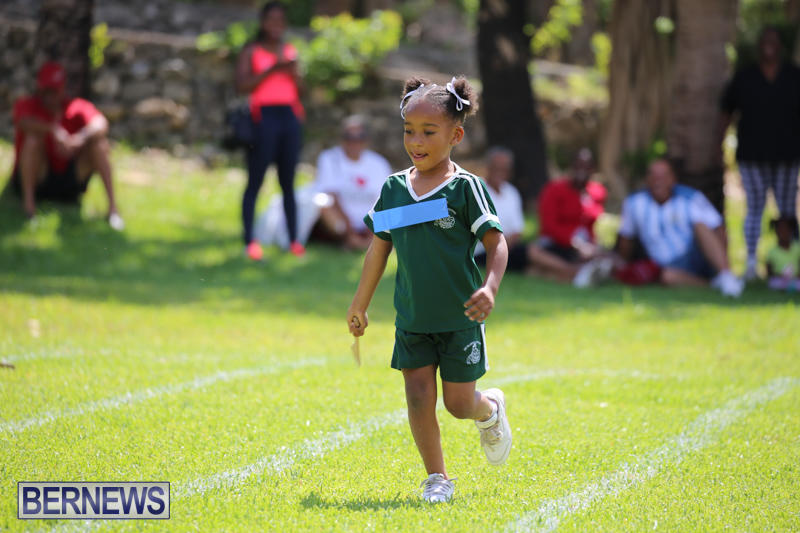 Devonshire-Preschool-Sports-Bermuda-May-22-2015-52