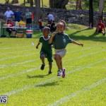 Devonshire Preschool Sports Bermuda, May 22 2015-6