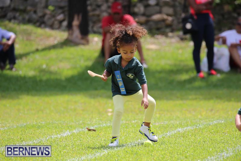 Devonshire-Preschool-Sports-Bermuda-May-22-2015-60