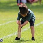 Devonshire Preschool Sports Bermuda, May 22 2015-62