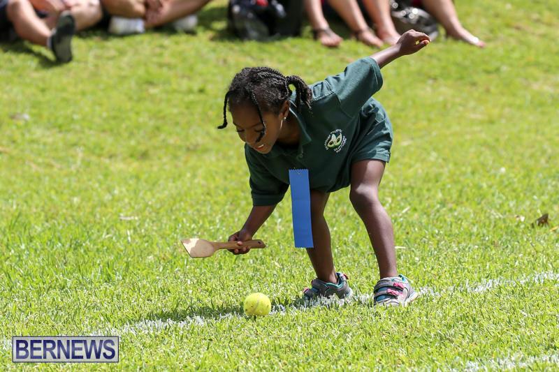 Devonshire-Preschool-Sports-Bermuda-May-22-2015-65