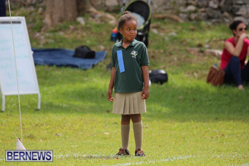 Devonshire-Preschool-Sports-Bermuda-May-22-2015-77