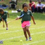Devonshire Preschool Sports Bermuda, May 22 2015-82