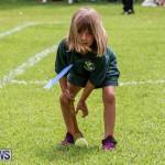 Devonshire Preschool Sports Bermuda, May 22 2015-88
