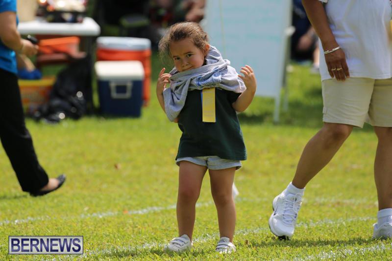 Devonshire-Preschool-Sports-Bermuda-May-22-2015-96