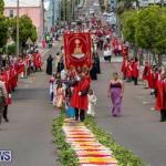 Festa Santo Cristo Segundo Dia Bermuda, May 10 2015-73