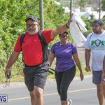Middle To End Bermuda, May 2 2015 (4)