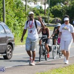 Middle To End Bermuda, May 2 2015 (41)