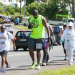 Middle To End Bermuda, May 2 2015 (83)
