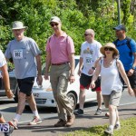 Middle To End Bermuda, May 2 2015 (89)