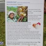Onion Day St David's Bermuda, May 23 2015-27