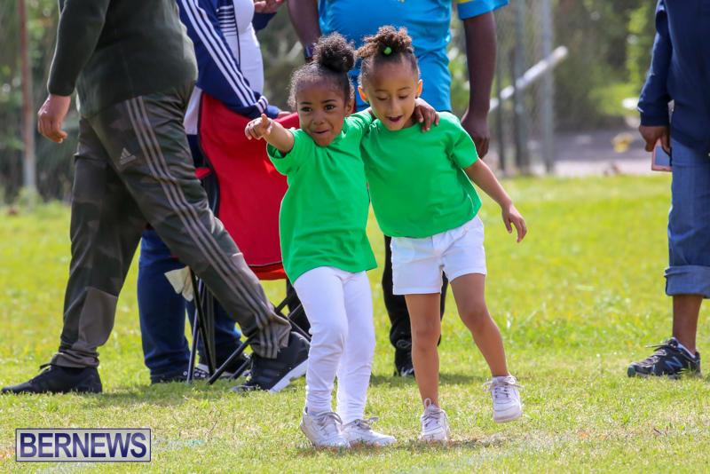 Prospect-Preschool-Sports-Day-Bermuda-May-1-2015-14