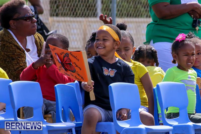 Prospect-Preschool-Sports-Day-Bermuda-May-1-2015-4