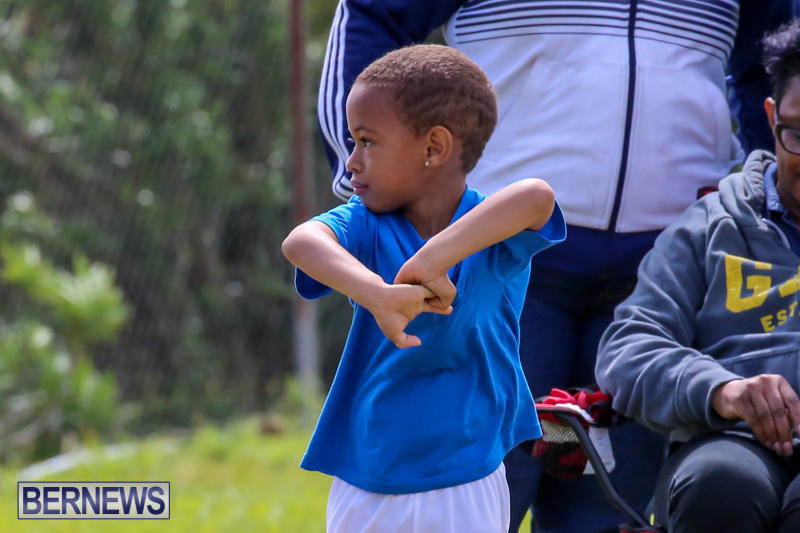 Prospect-Preschool-Sports-Day-Bermuda-May-1-2015-72