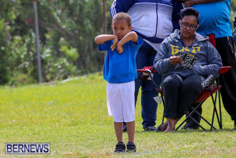 Prospect-Preschool-Sports-Day-Bermuda-May-1-2015-73