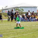 Prospect Preschool Sports Day Bermuda, May 1 2015-87