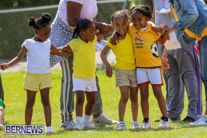 Prospect-Preschool-Sports-Day-Bermuda-May-1-2015-9
