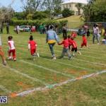 Prospect Preschool Sports Day Bermuda, May 1 2015-94