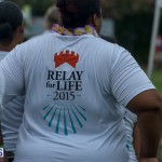 Relay For Life 2015-05-30 (26)