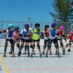 Roller Derby 2015-05-03  (23)