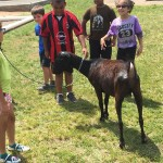 St. George's Children Fun Packed Day 2015May22 (15)