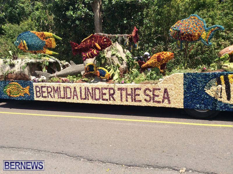 bermuda-day-floats-2015-21