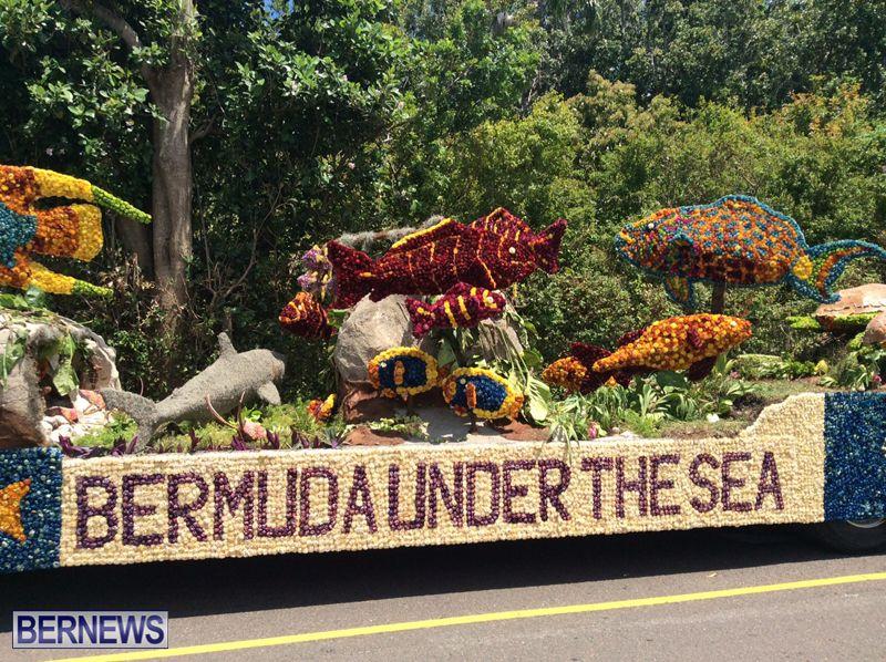 bermuda-day-floats-2015-22