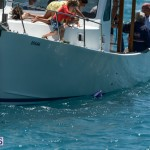 fitted-dingy-races-st-george-may-2015-21