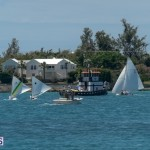 fitted-dingy-races-st-george-may-2015-22