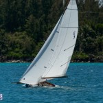 fitted-dingy-races-st-george-may-2015-23