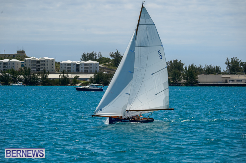 fitted-dingy-races-st-george-may-2015-24