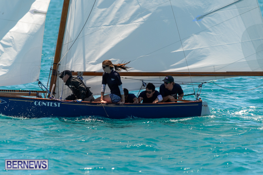 fitted-dingy-races-st-george-may-2015-26