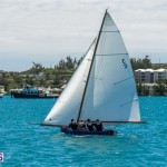fitted-dingy-races-st-george-may-2015-28