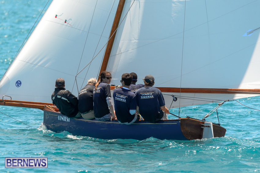 fitted-dingy-races-st-george-may-2015-30