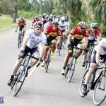 tokio cycling may 2015 (5)