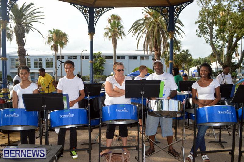 Bermuda Pan in the Park June 2015 (7)