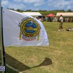 Bermuda Pow Wow, June 14 2015-1