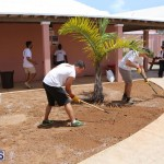 KPMG Clean Up At Dellwood School, June 5 2015 (15)