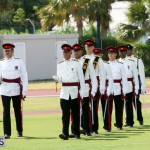 Queen's Birthday Parade June 13 2015 (19)