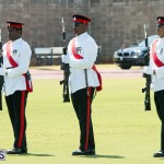 Queen's Birthday Parade June 13 2015 (57)