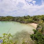 Trunk Island Bermuda, June 16 2015-18