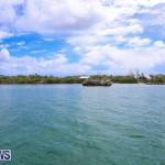 Trunk Island Bermuda, June 16 2015-2