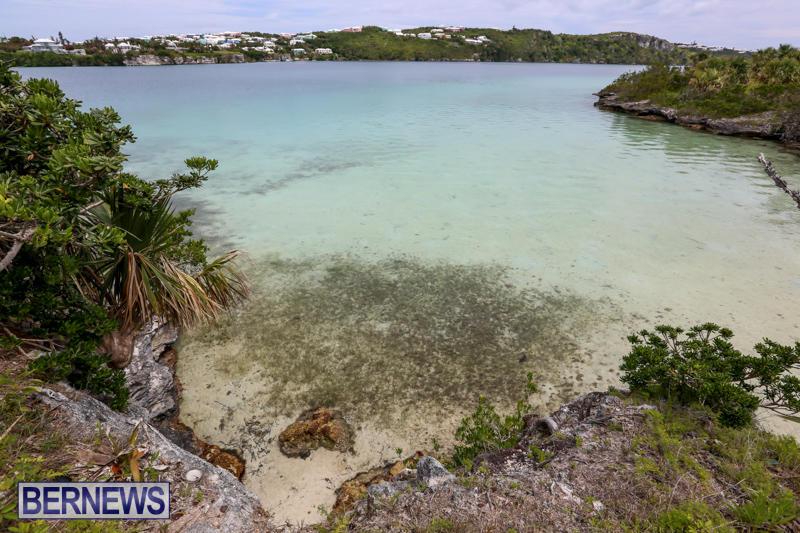 Trunk-Island-Bermuda-June-16-2015-20